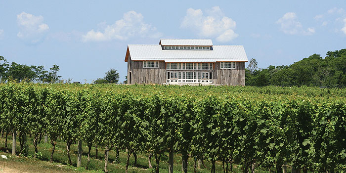 What's Hot in the Hamptons for Summer 2013