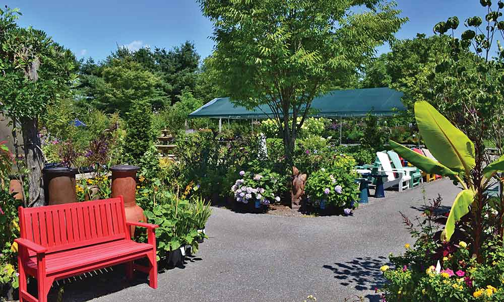 Small Business Spotlight: Bay Gardens, East Moriches
