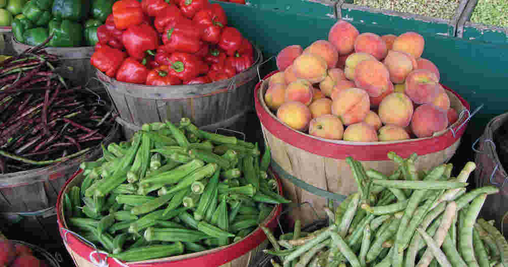 Find Your Harvest Bounty at These South Shore Farmers Markets