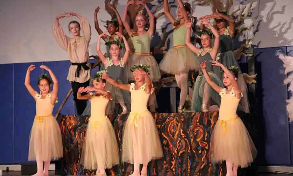 Tickets Available for Peter and the Wolf Ballet at the Hampton Ballet Theatre School