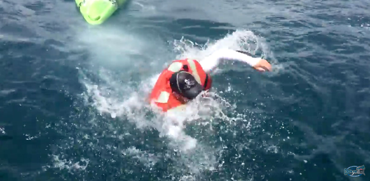 Shark Flips Kayak: Angler Swims For Life Then Catches Shark