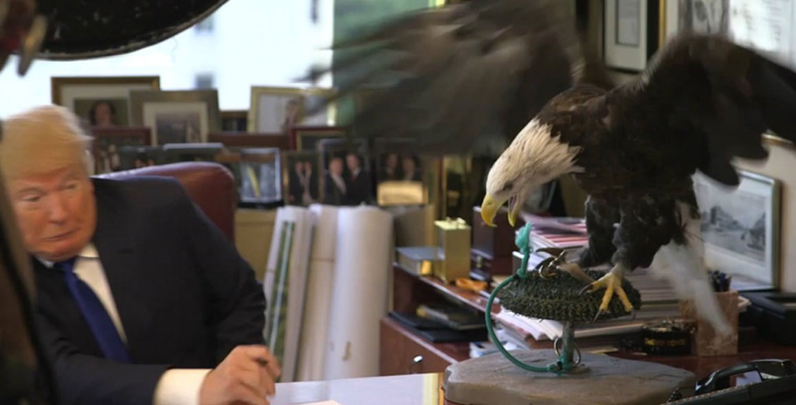 Donald Trump Gets Attacked By A Bald Eagle